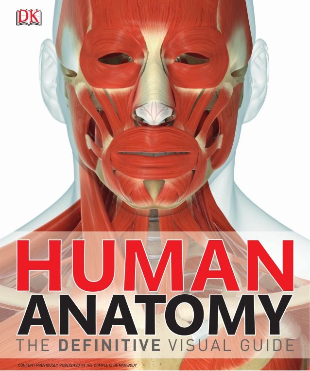 ANATOMYANATOMY HHUUMANMAN THE DEFINITIVE VISUAL GUIDE CONTENT PREVIOUSLY PUBLISHED IN COMPLETE HUMAN BODY