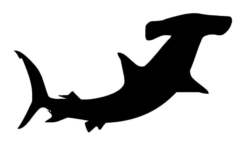 hammerhead shark silhouette google search