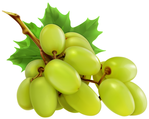 White Grapes PNG Clipart Aliexpress