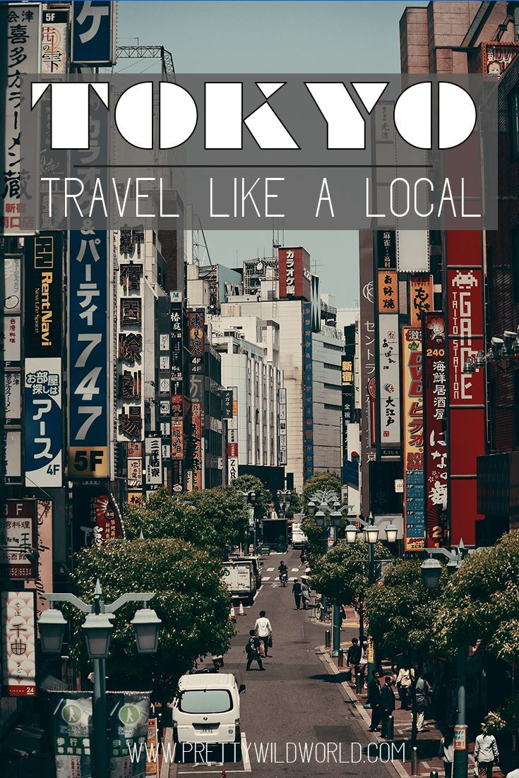 things to do in japan: tokyo like a local | asian travel inspiration