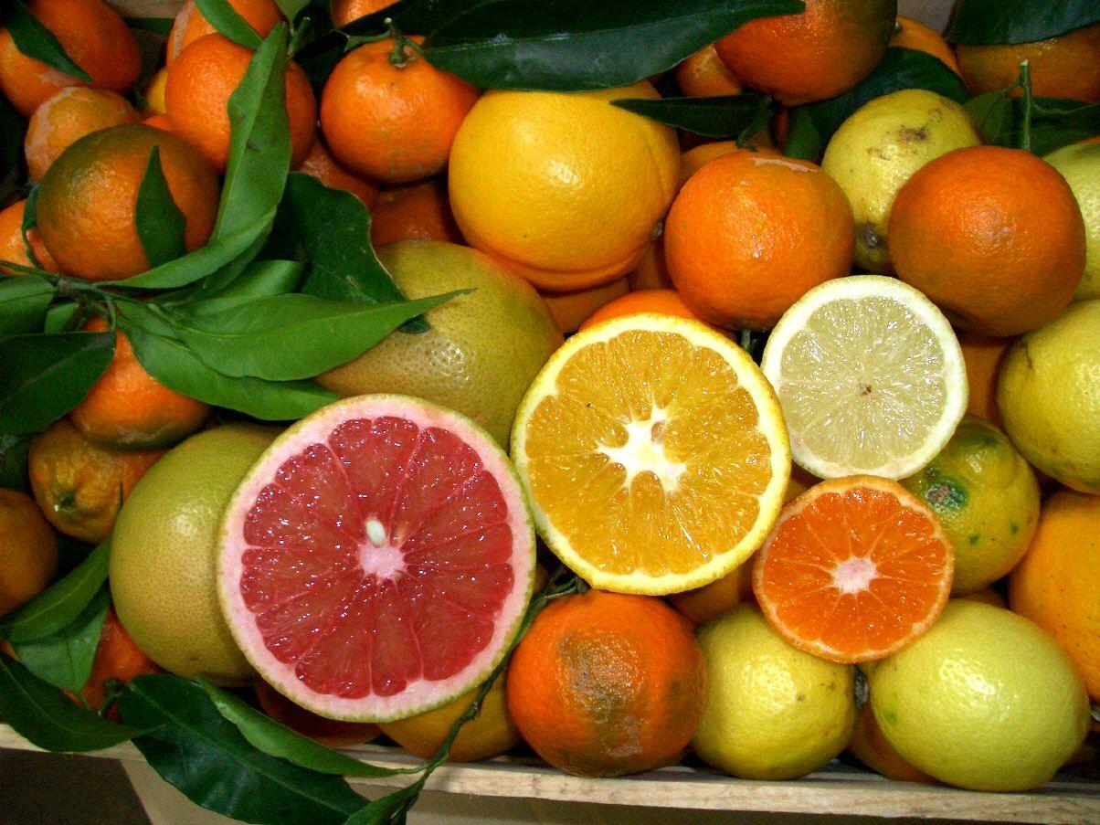 Agrumi Di Sicilia Cibo Verdure E Alimenti