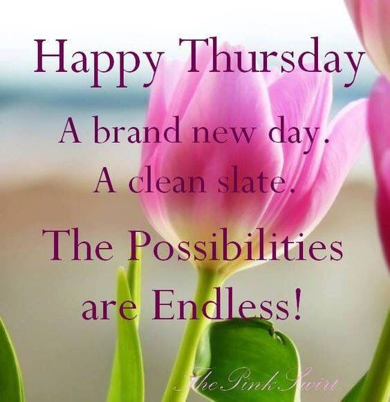 Thursday Quotes Of The Day Happy Thursday Its A Brand New Day good morning thursday thursday  Thursday Quotes Of The Day