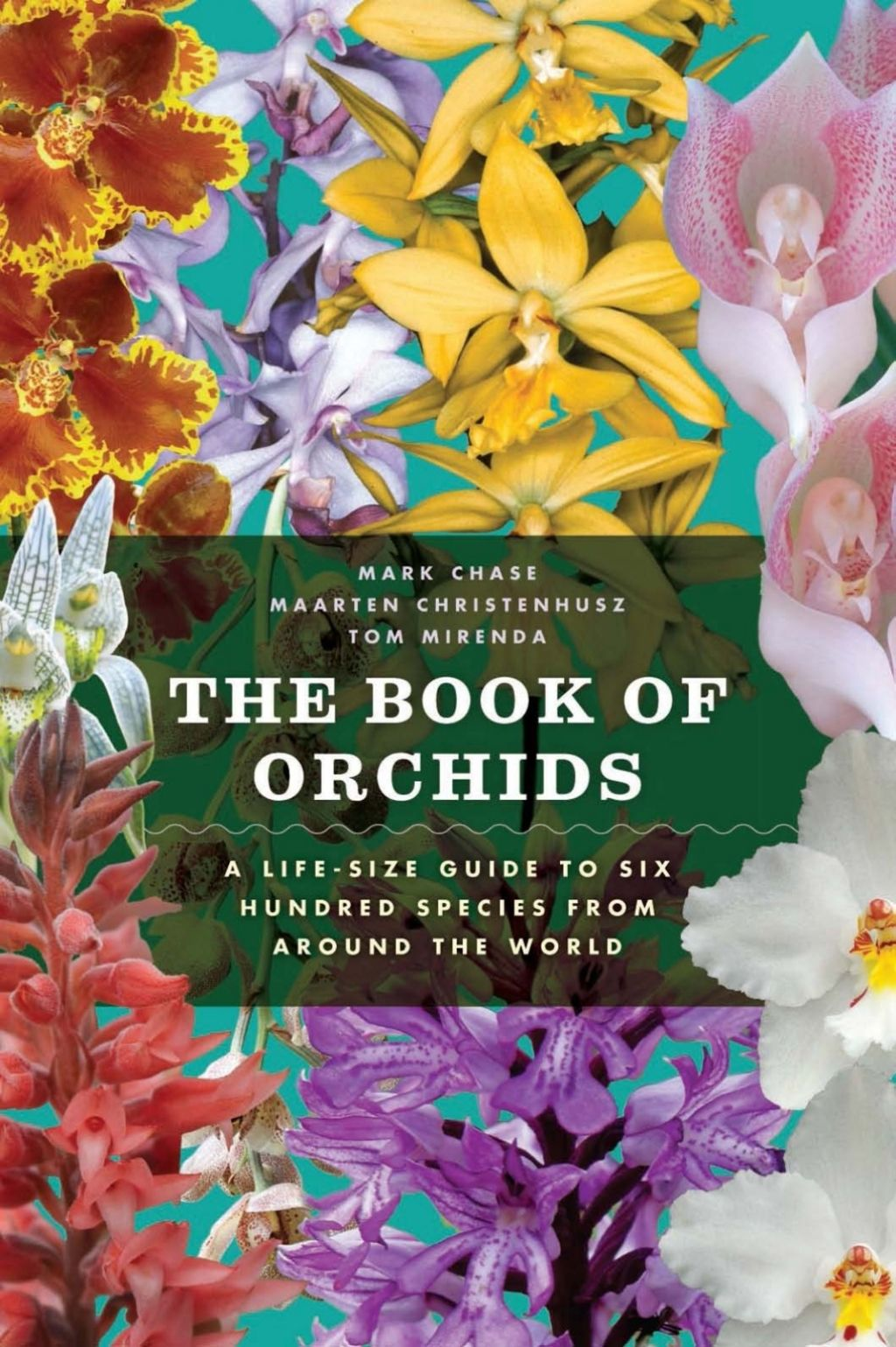 Photo of The Book of Orchids (eBook)