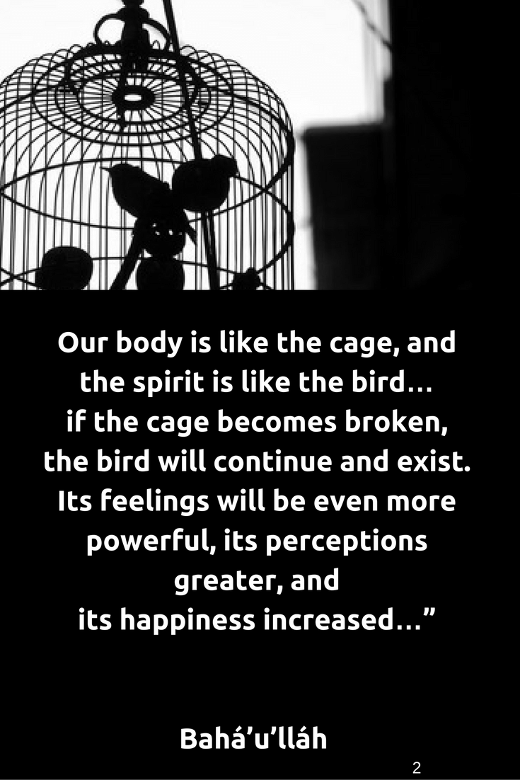 Our Body Is Like The Cage And The Spirit Is Like The Bird If The