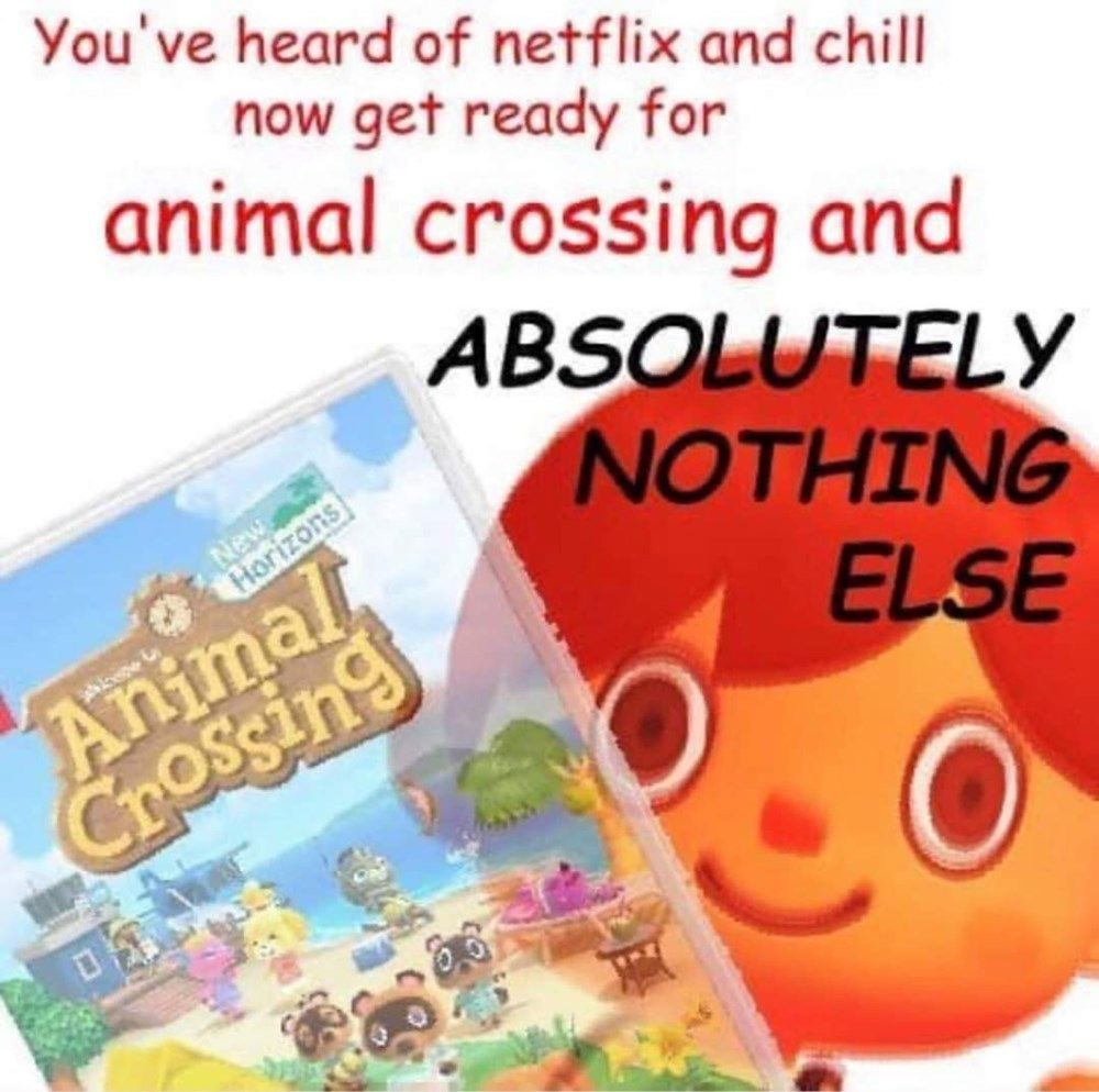 Photo of Just A Lovely Bunch Of Animal Crossing Memes & Comics