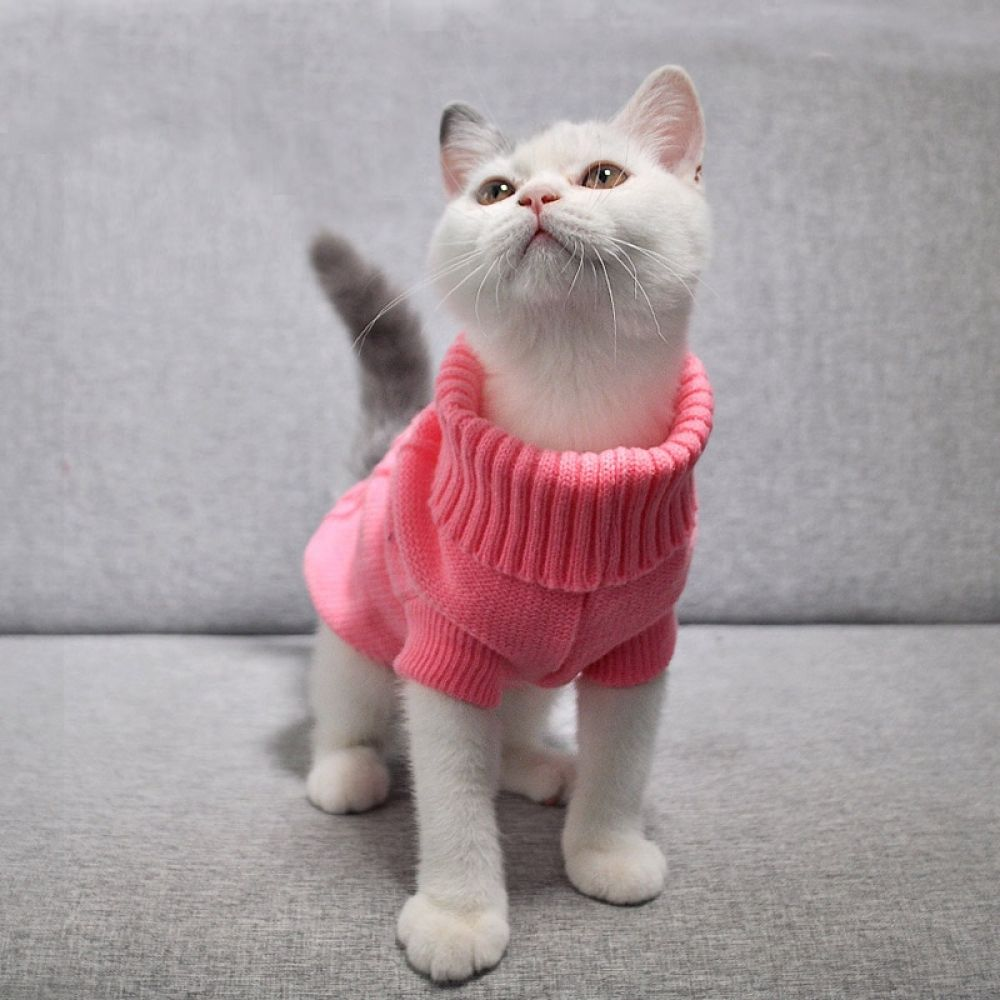 Warm Knitted Sweater For Pet In 2020 Kitten Clothes Cat Sweaters Cat Clothes