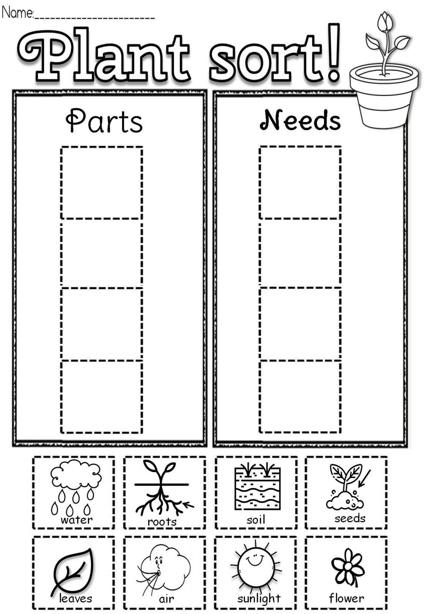Let S Read About Plants