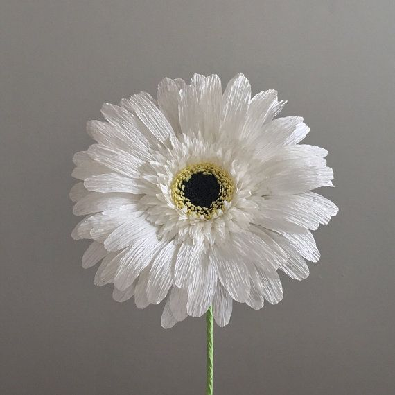This single stem crepe paper Gerber daisy is highly detailed and realistic. This beautiful bloom never requires water and can add a splash of color to your home or office, at your wedding, or simply wherever you care to enjoy it. Every piece is handcrafted and will be one-of-a-kind. Each bloom is approximately 5 in diameter and is on an 18 wire stem. The stem can be cut or bent to fit in any vase you desire. The price of shipping is based on the number of blooms purchased. Up to 3 daisies…
