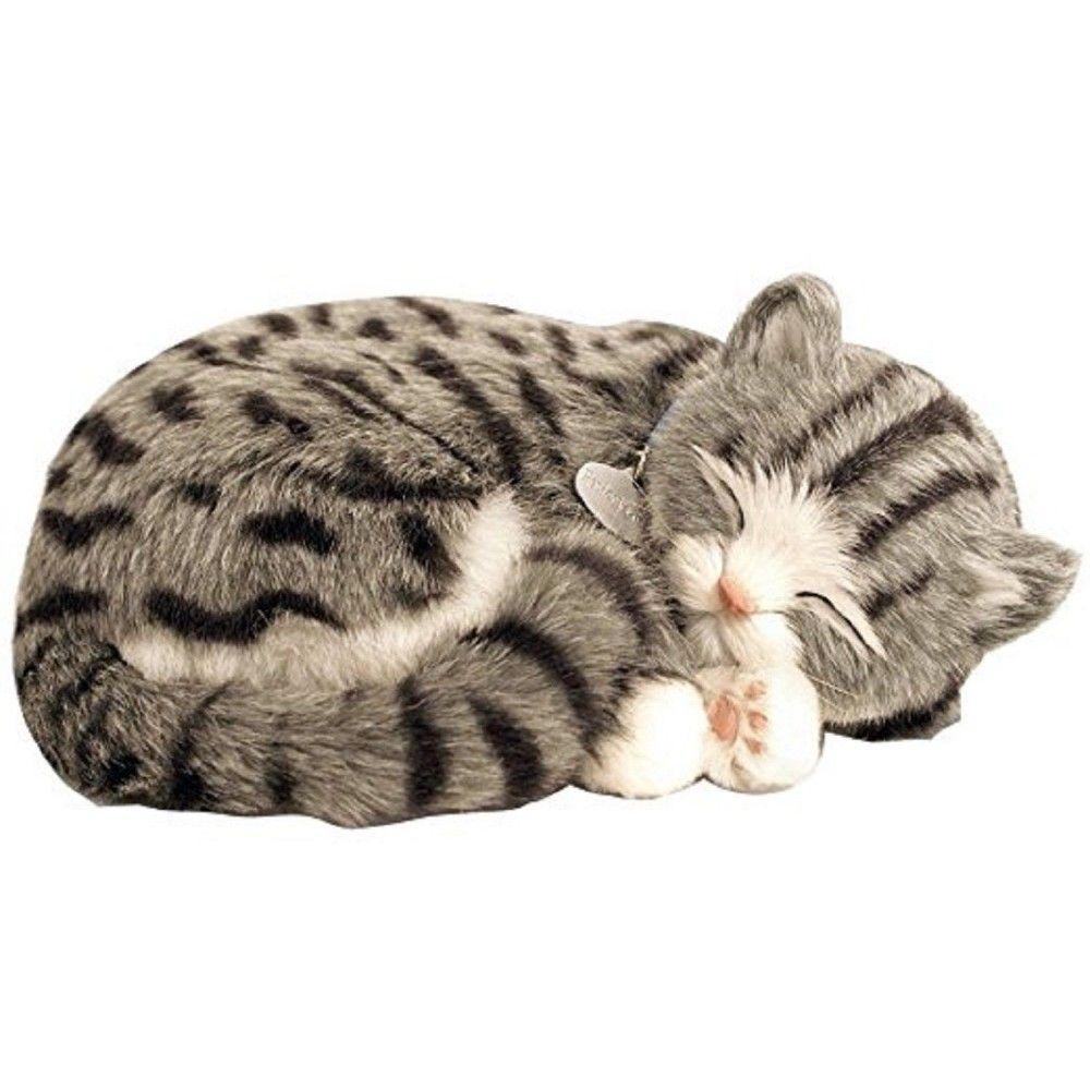 Perfect Petzzz The Original Breathing Huggable Pet Grey Tabby Perfect Petzzz Hair Cosmetics In Harlow Watford Croydon Epsom Edgware Cheshunt In 2020 Grey Tabby Cats Grey Tabby Kittens Tabby Cat