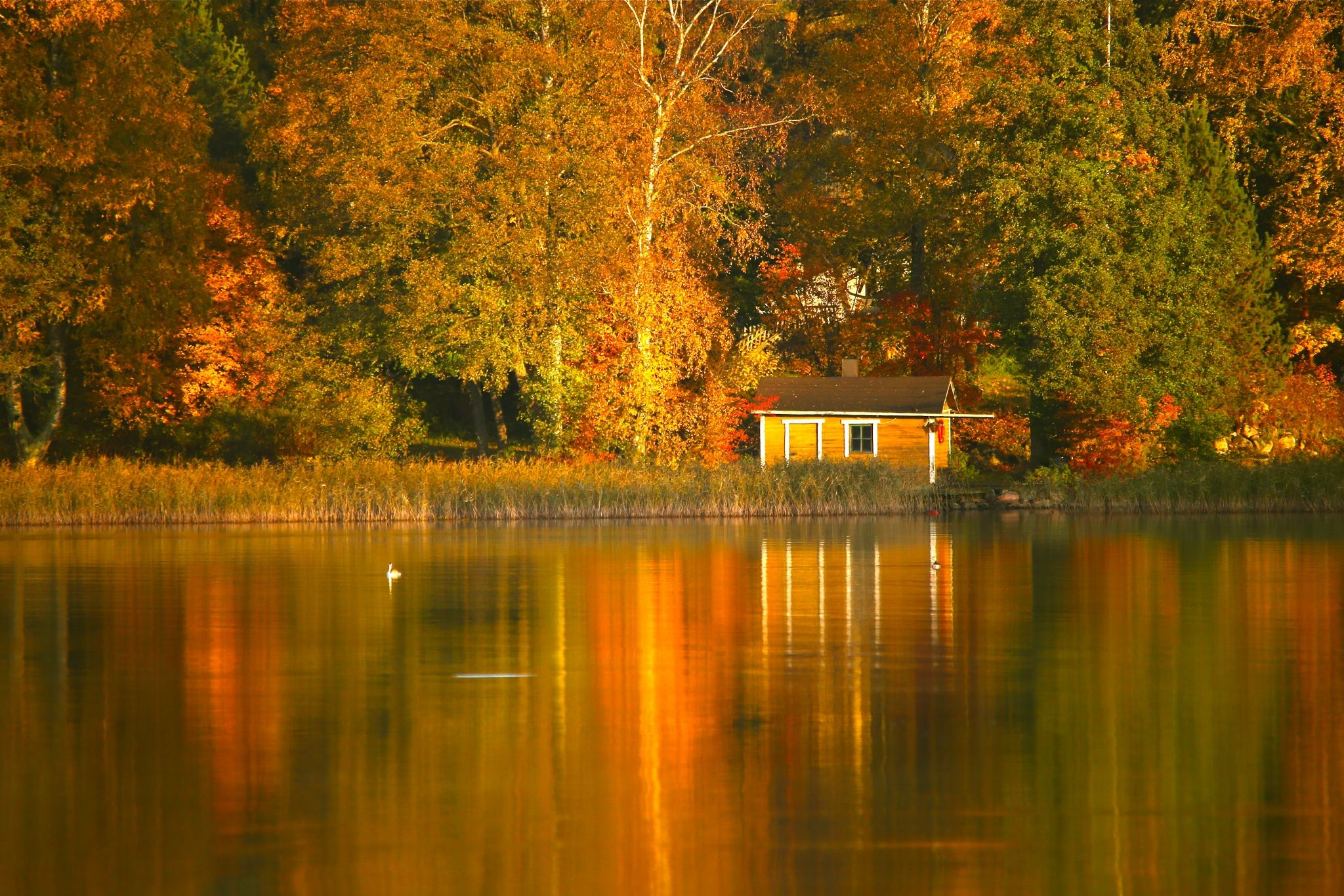 Photograph Autumn reflections by Päivi Vikström on 500px