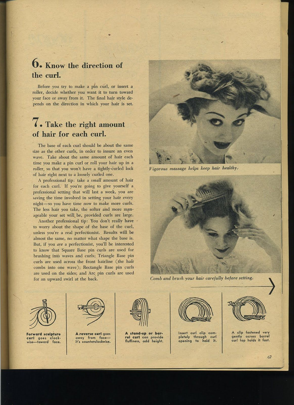 vintage pin curls diagram muscle anterior hand types of style beauty class hair styles