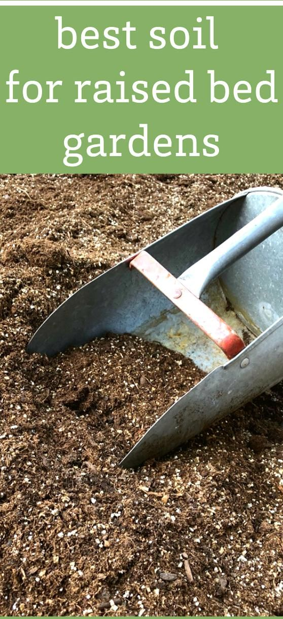 If youre wondering what the best soil for raised bed