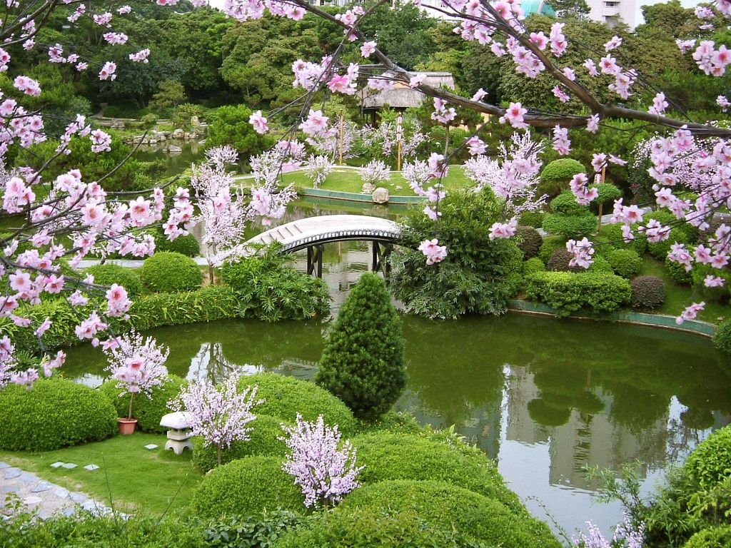 Cherry Blossoms, rivers, gardens.  The beauty of China amazes us every time we visit!
