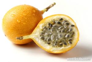 Pin On Frutas Originarias De Mexico