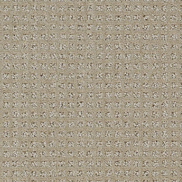 beige carpet - Google Search