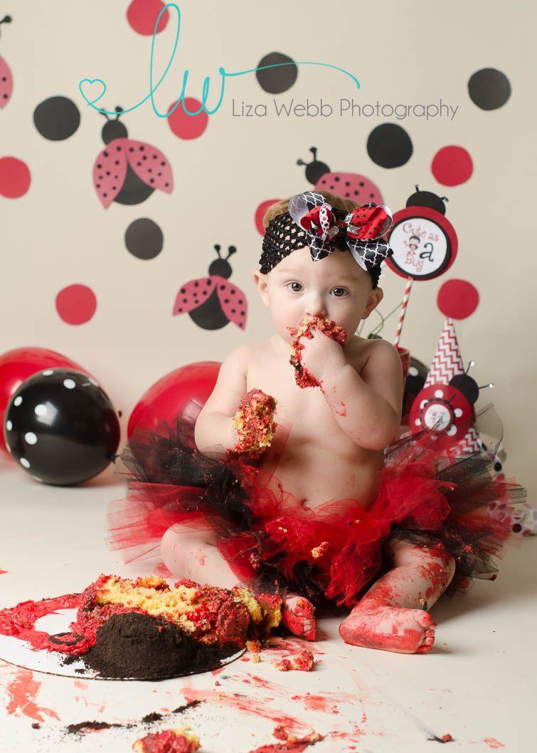 Ladybug Cake Smash Red And Black First Birthday Girl Liza Webb Photography