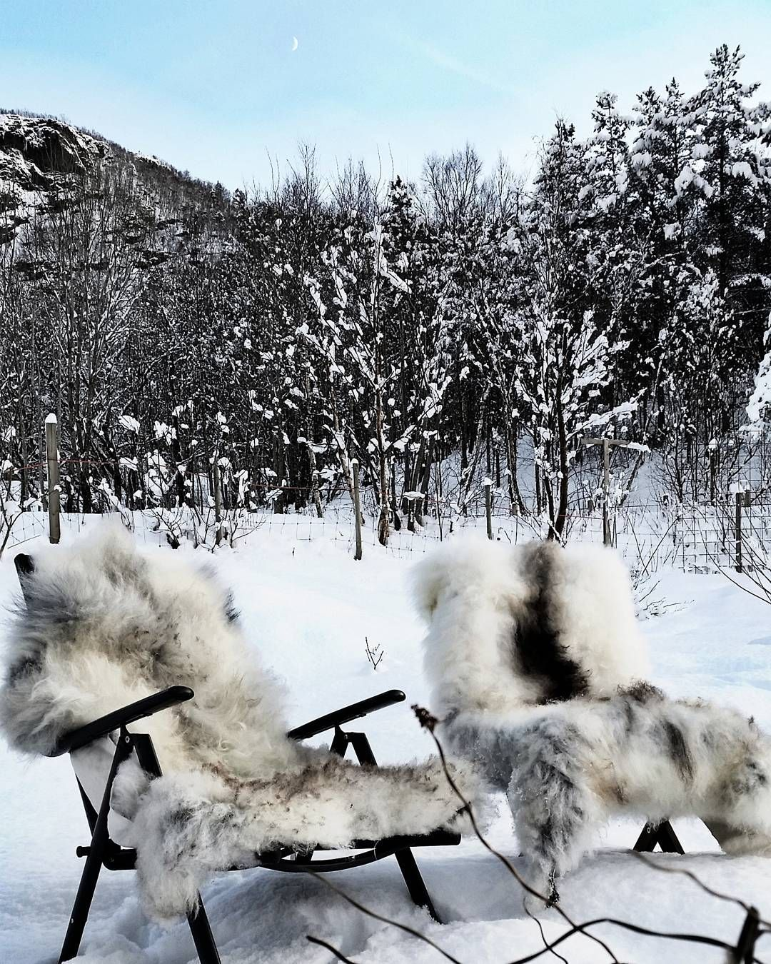 Last fall we sent our first 5 sheepskins  to the last existing tannery in Norway; Granberg Garveri. We  just got 3 furs back and they are amazing. In the future we hope to do this on a yearly basis. #skinnfell #villsau #sheep #sheepskin #tannery  #norwegianwayoflife #granberggarveri #saueskinn #interior #interior2you #interiordesign #countryliving #outdoors #outdoorlife
