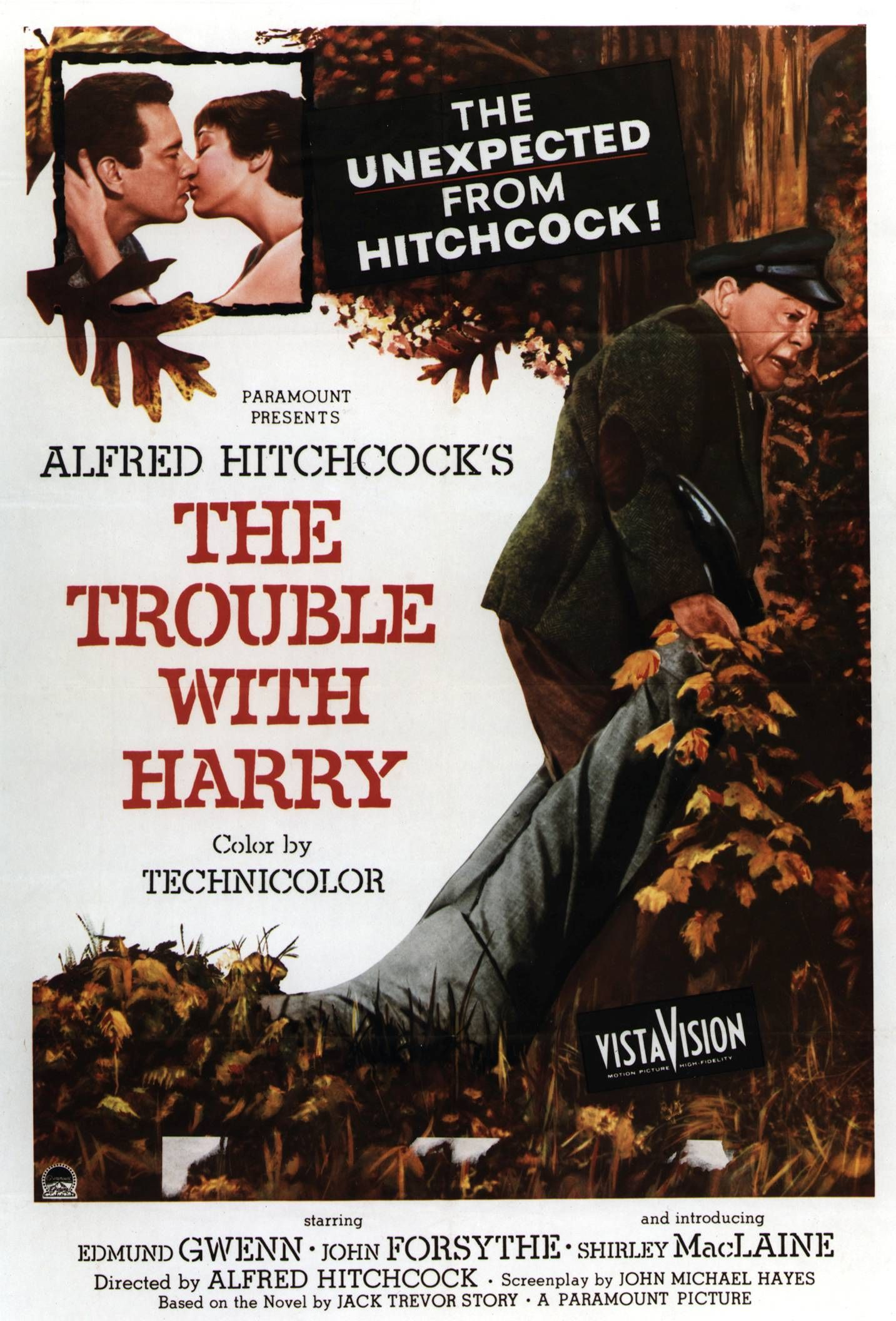 Alfred Hitchcock Movie Posters The Afi Catalog Of Feature Films