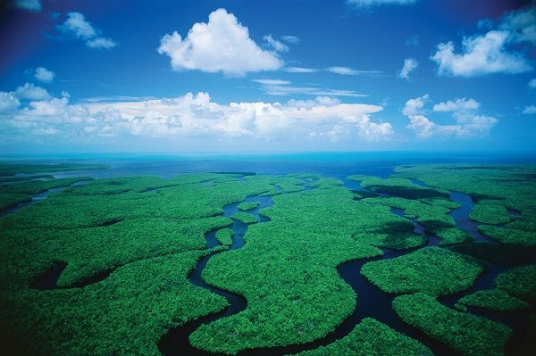Everglades National Park is located in the southern tip of Florida, just west of the city of Miami .