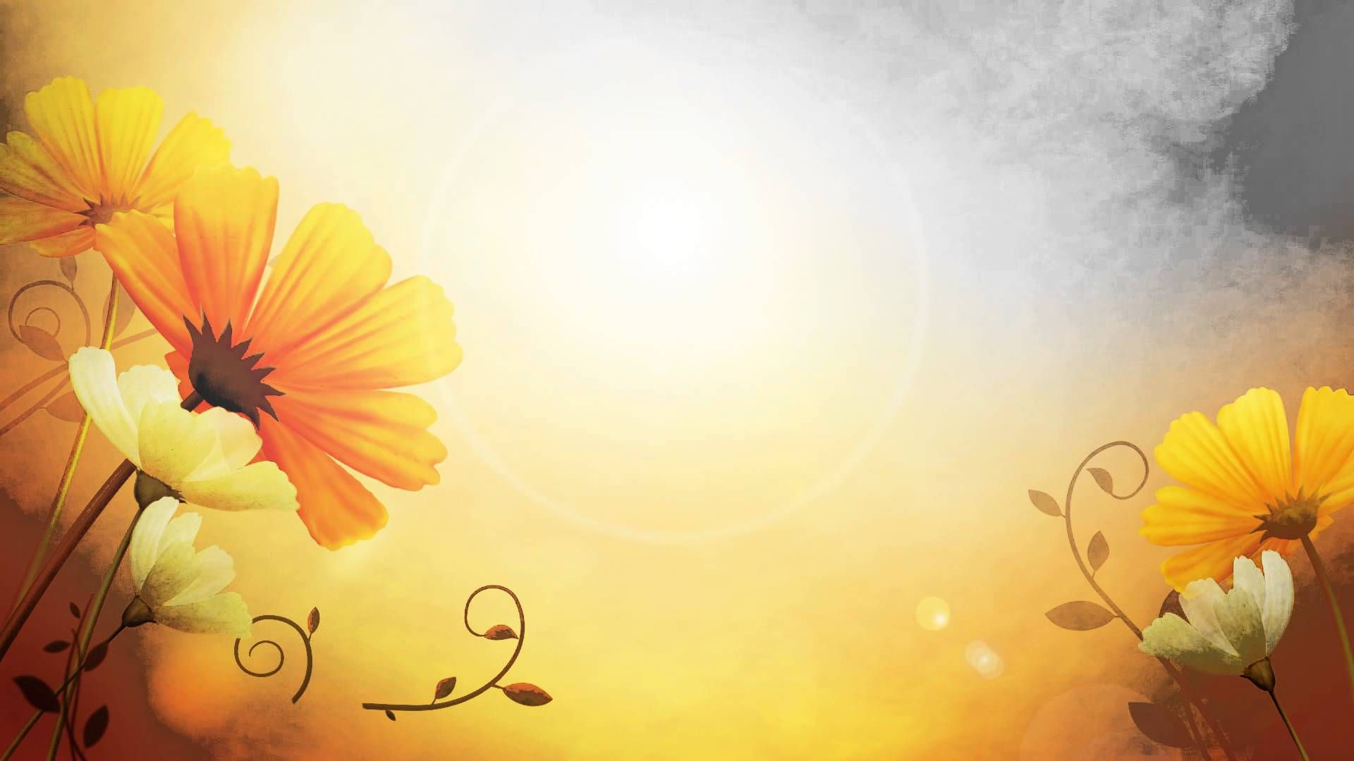 Video Background HD Flower HD Style Proshow