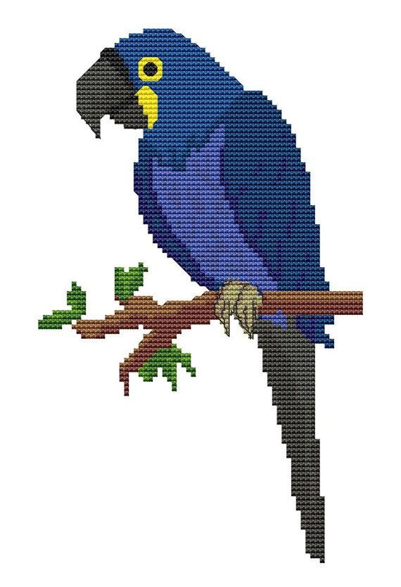 macaw parrot counted cross stitch pattern bird by fredspools classic cross. Black Bedroom Furniture Sets. Home Design Ideas
