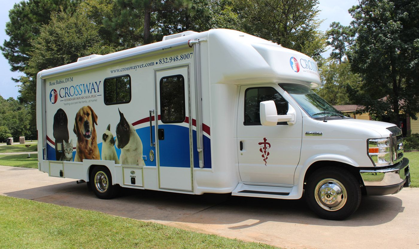 How to Start a Mobile Veterinary Clinic Animal Career