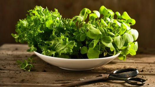 Purslane - health benefits - how to eat it - Learn to love these everyday and exotic health boosters.