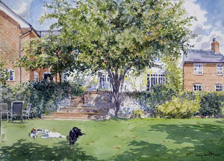 Lucy Willis - Still Life | Watercolor artwork, Watercolor