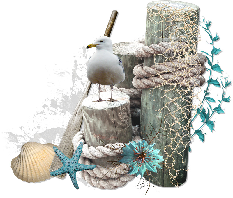 Pin by Renette Lloyd on Inspirations sea and beach | Scrap ...