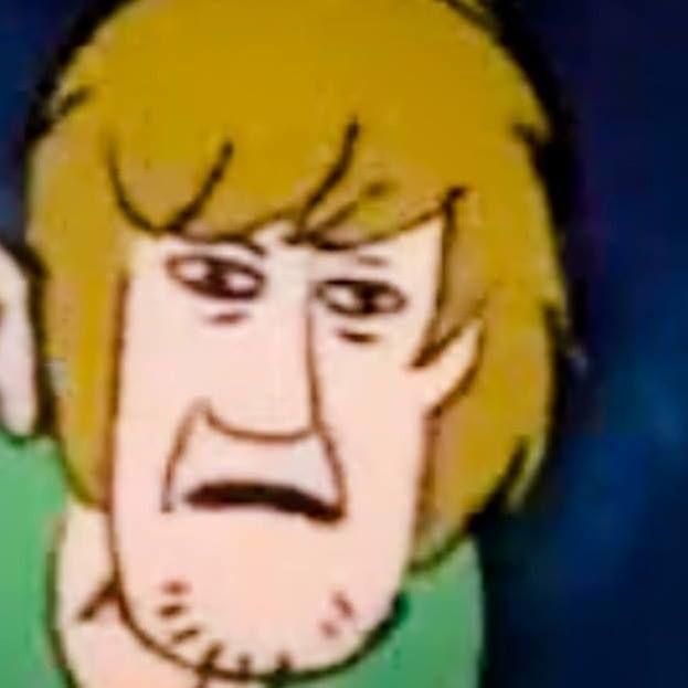 Lol Shaggy Face Jpg 623 623 Funny Profile Pictures Meme Faces Cartoon Memes