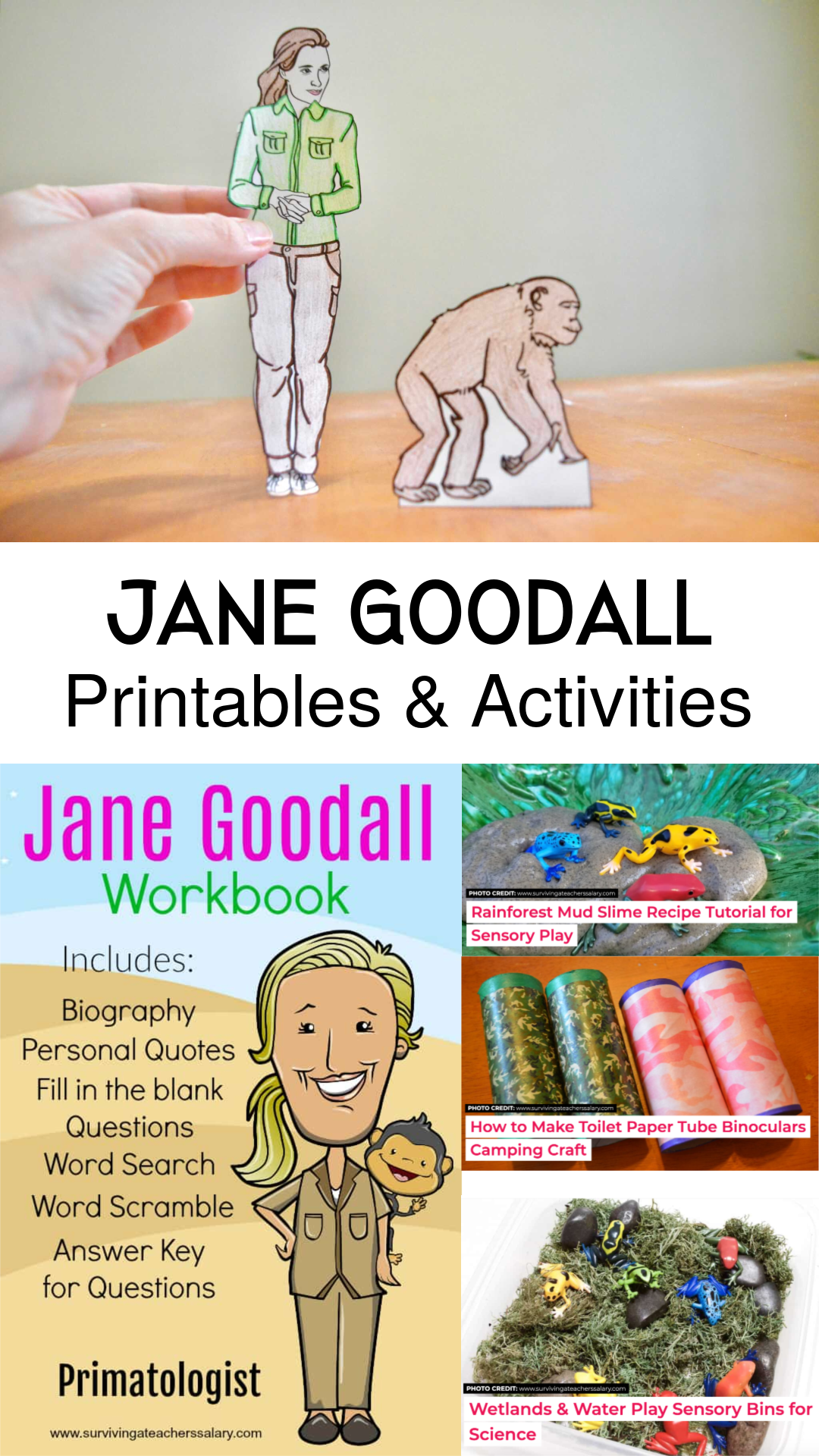 All About Jane Goodall Worksheets Amp Activities