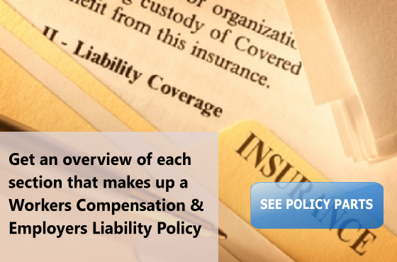 Workers Compensation and Employers Liability Policy Job