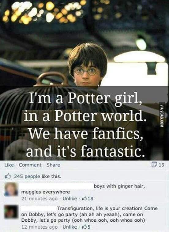 Harry Potter Barbie Girl Mashup Harry Potter Song Harry Potter Universal Harry Potter Fan