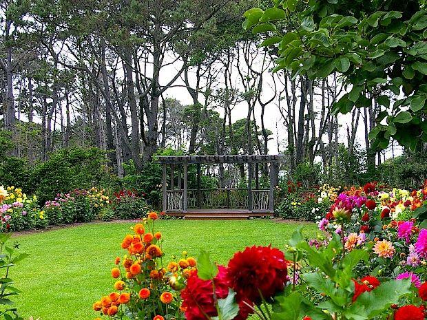 3345867c8aab3fb3a9640b4bcbf57fa8 - Festival Of Lights Mendocino Coast Botanical Gardens