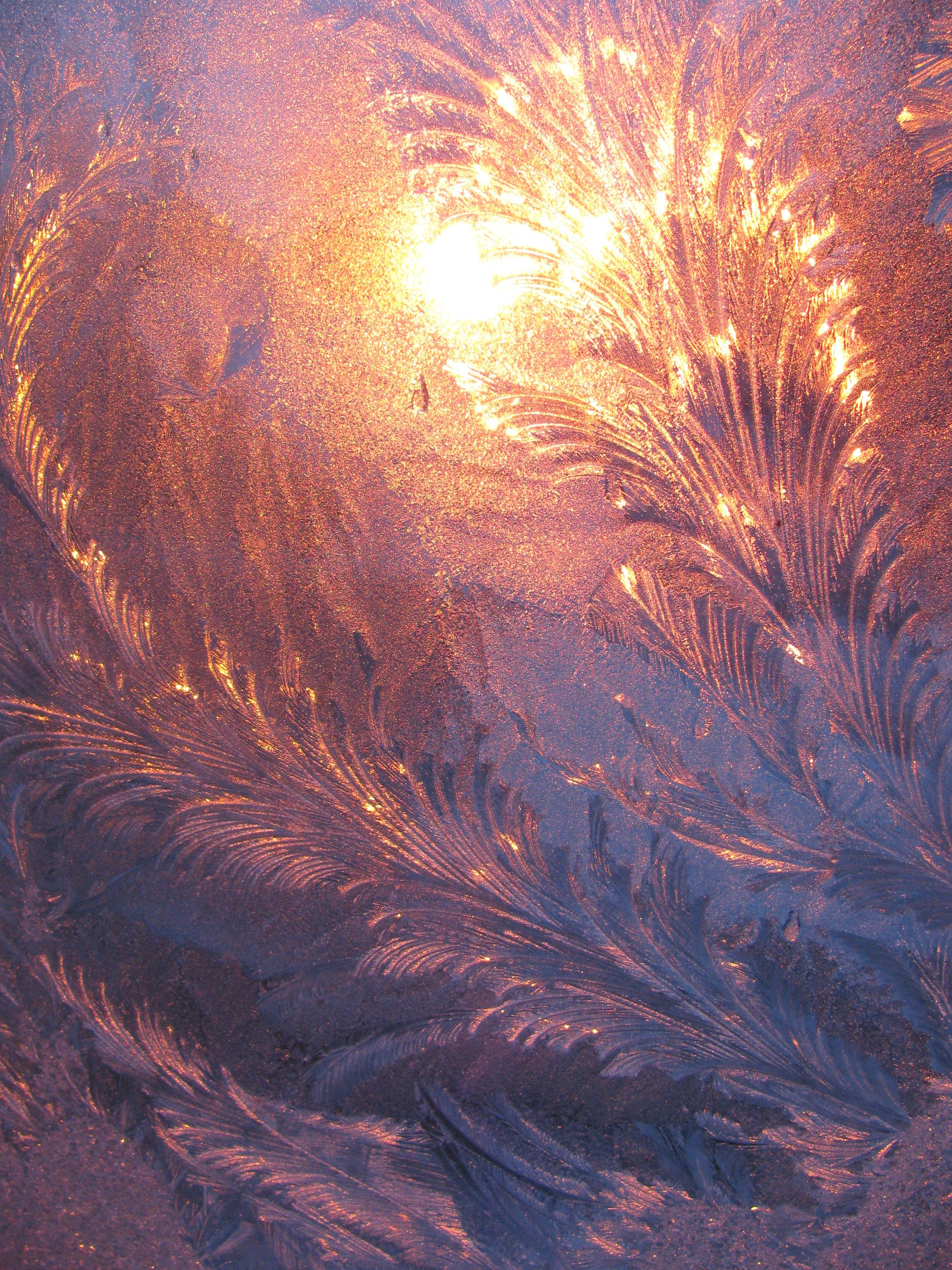 Morning sun through a frosted window