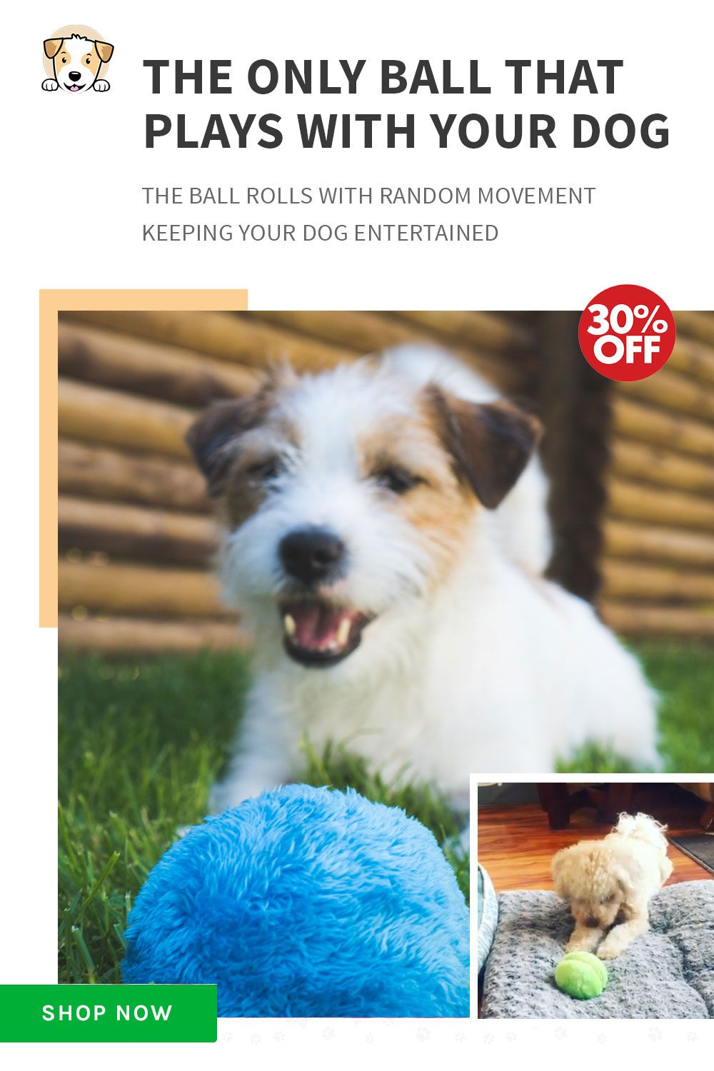 The Only Ball That Plays With Your Dog Shop Now Only At
