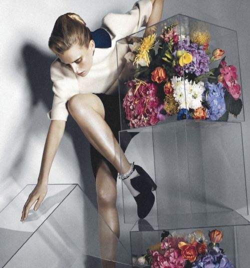 Flowers and Perspex.