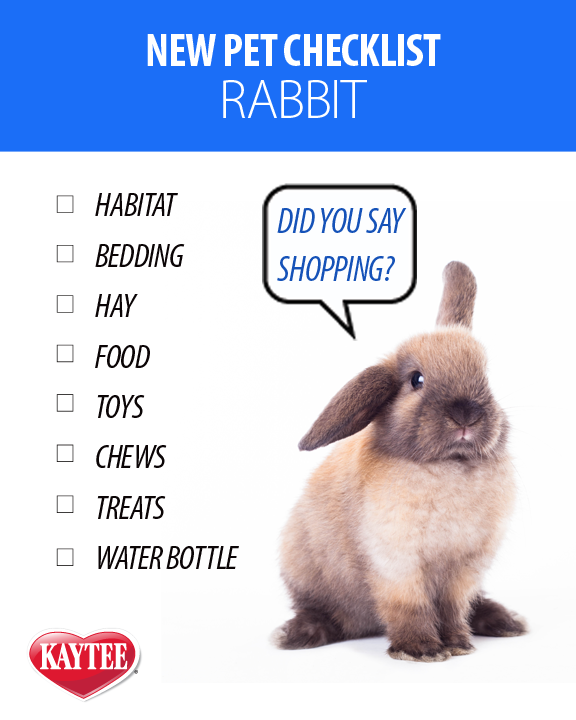 Pet Rabbit Shopping Checklist And Pet Parenting Tips For Your New Pet Bunny Care Tips Pet Rabbit Care Bunny Care