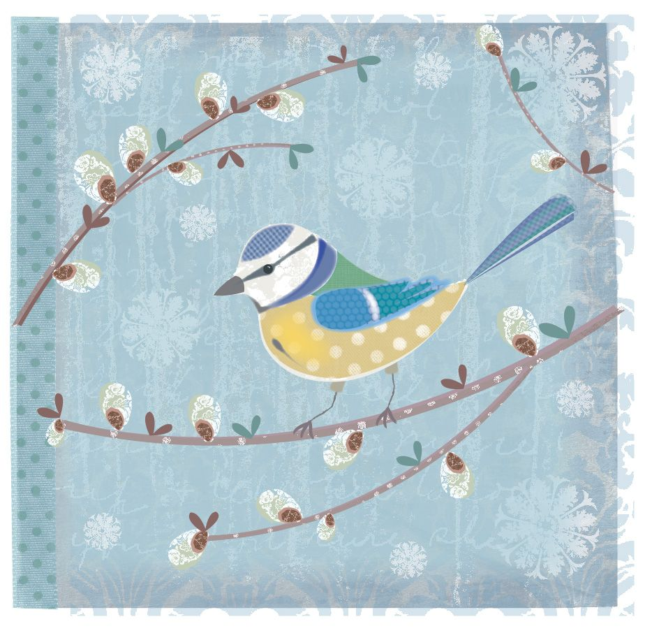 Blue tit. By Claire Sewell.
