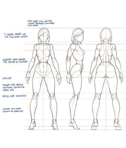 Character Design Collection: Female Anatomy #Femalefaces | Desenho ...