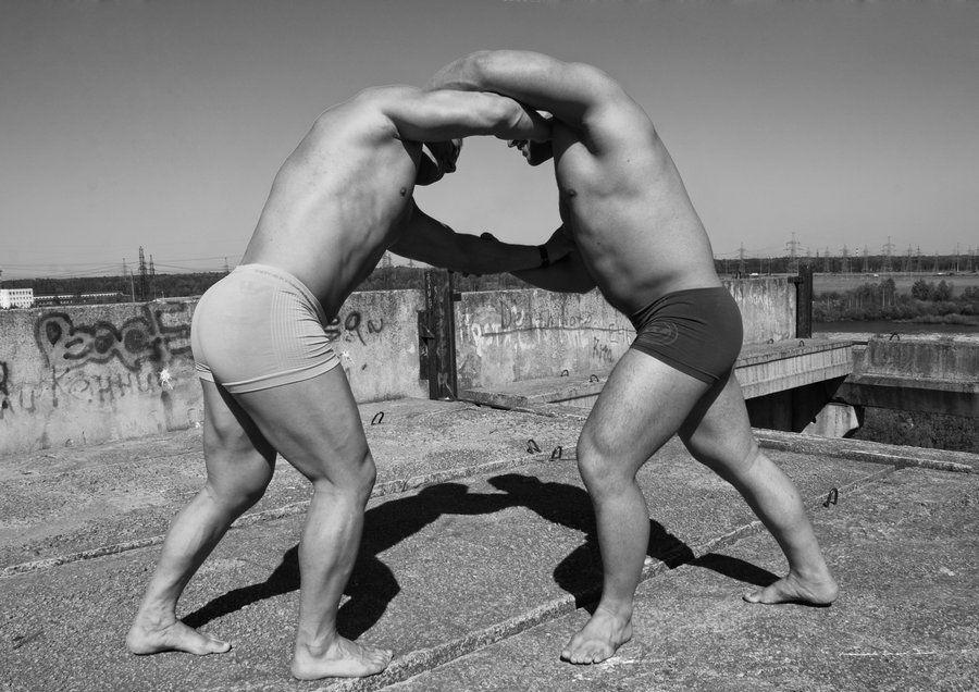 Gay bear wrestling