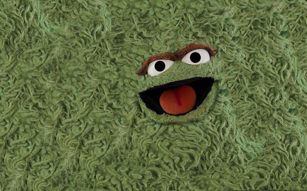 I Made Sesame Street Muppets Turned Into Rugs