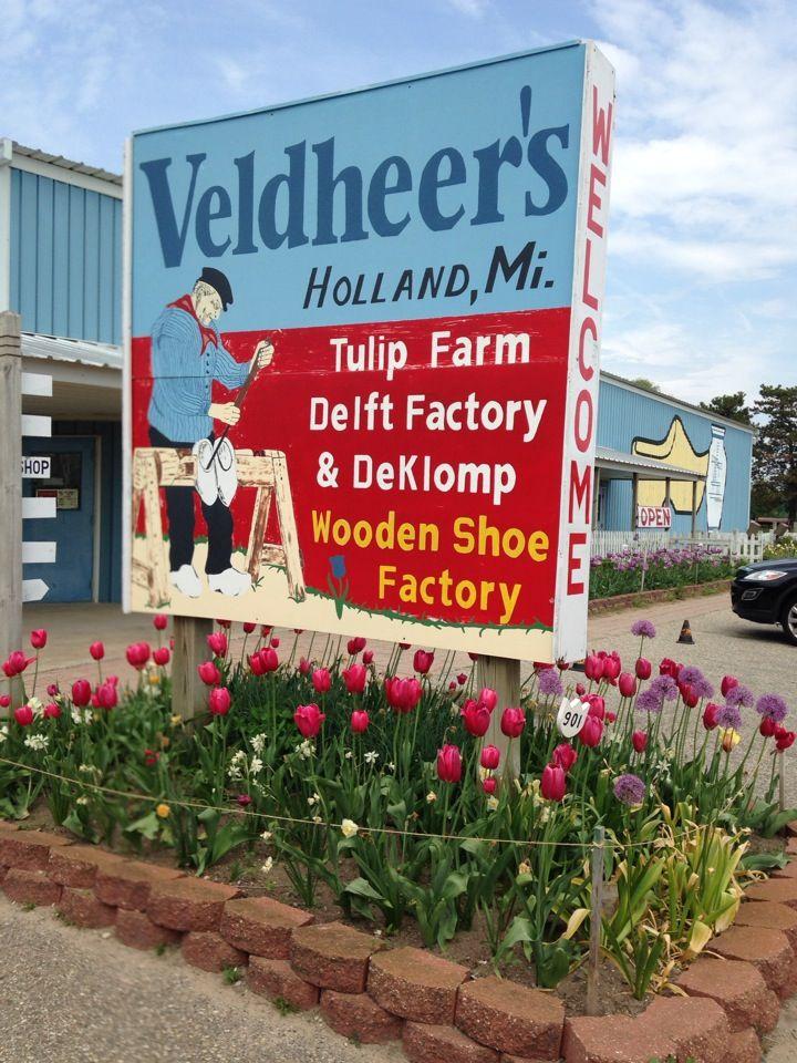 Veldheer Tulip Gardensdeklomp Wooden Shoe Factory In 2019 Places