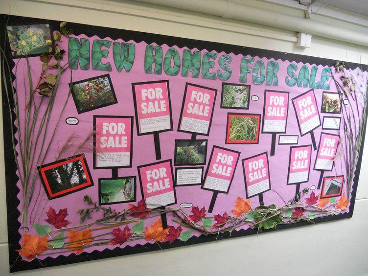 Classroom Display Ideas Ks1 ~ Science and investigation homes worm habitats