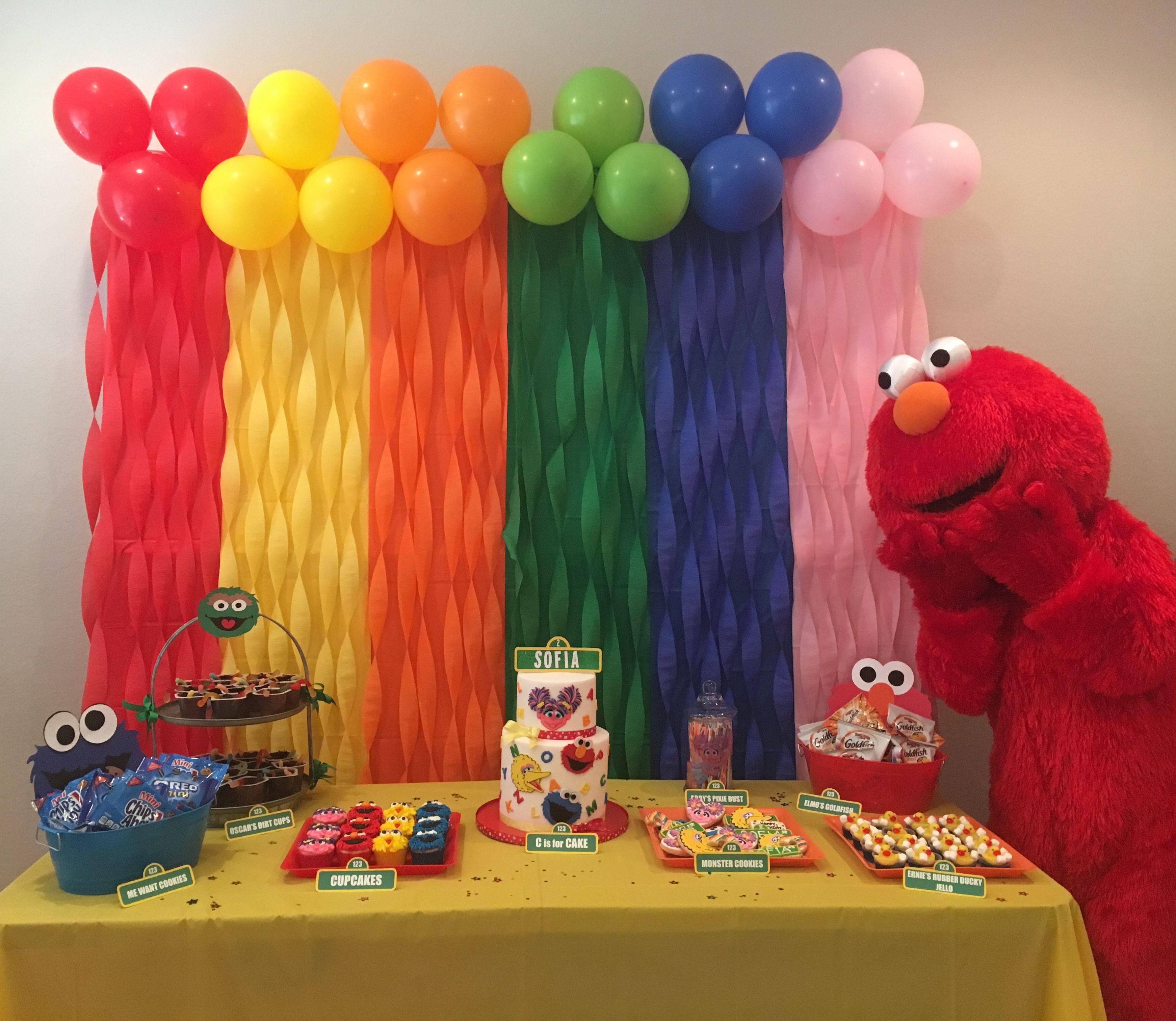 Sesame Street Backdrop Sesame Street Birthday Party Sesame Street Birthday Elmo Birthday Party