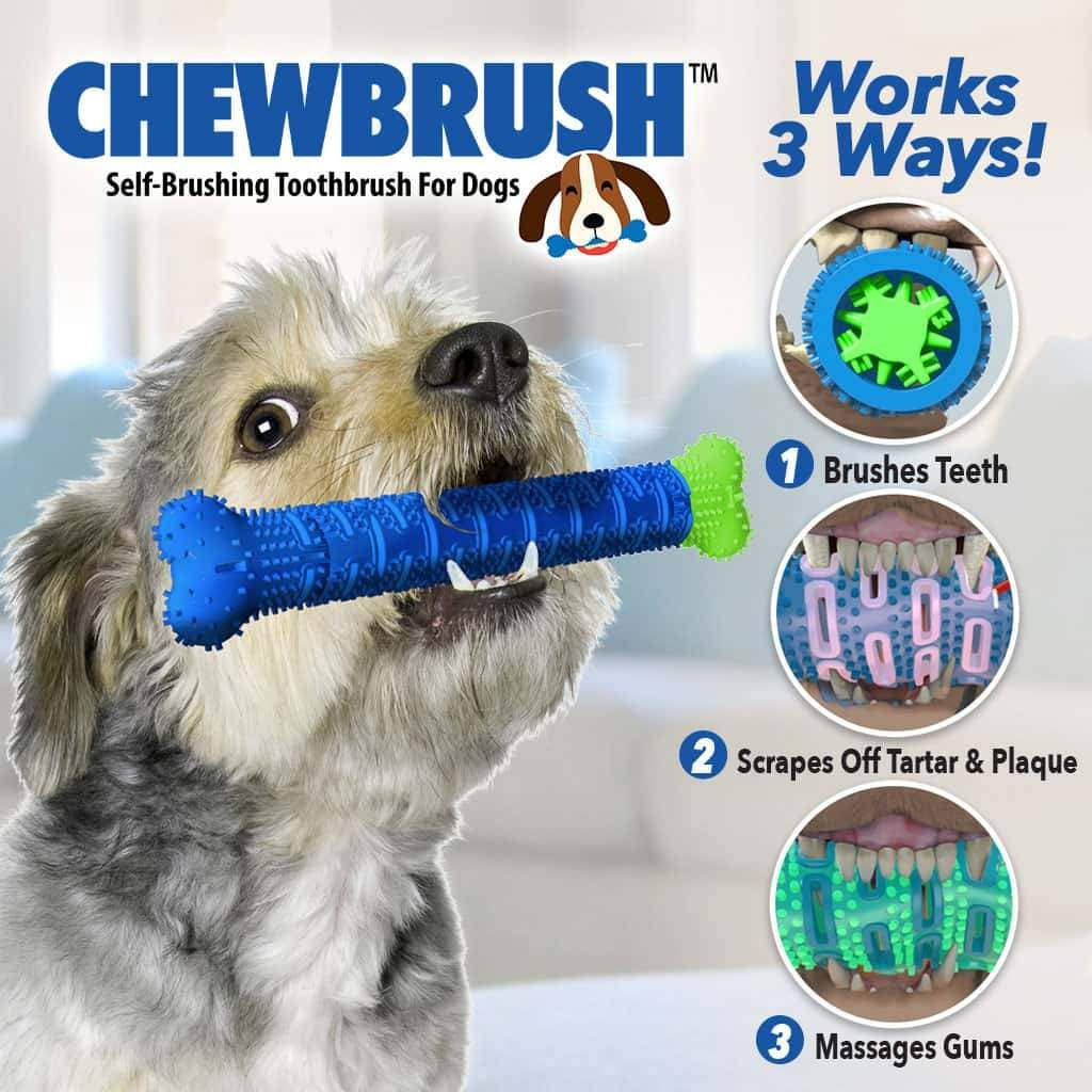 Chewbrush Dog Toys Dog Teeth Dog Chew Toys