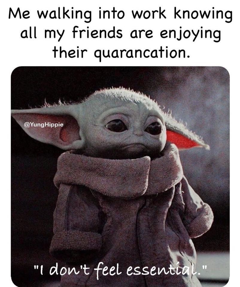 Pin By Devin Bonner On Baby Yoda In 2020 Yoda Meme Funny Memes Funny Relatable Memes