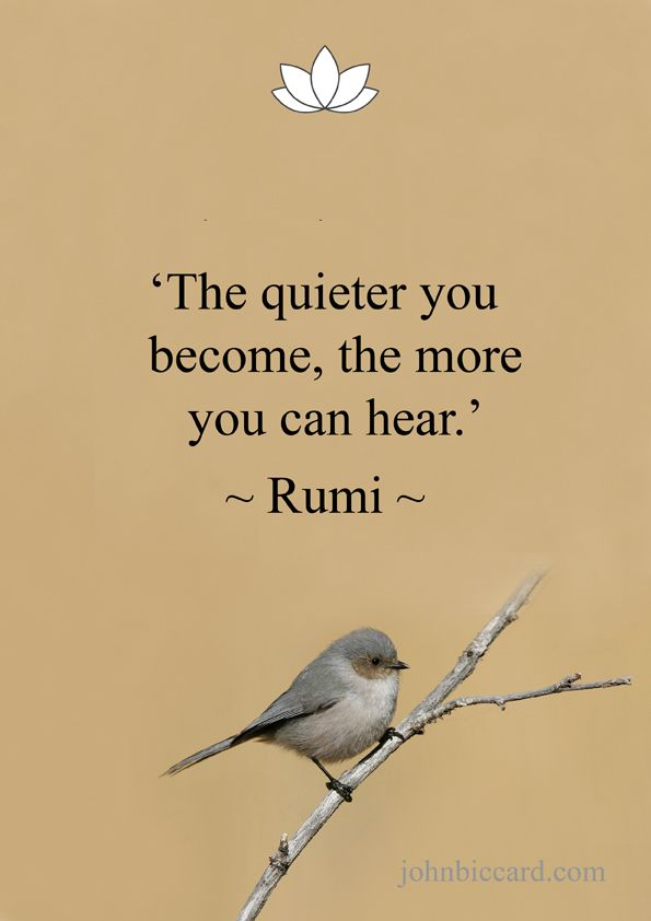 The Quieter You Become The More You Can Hear Rumi Quiet Quotes Listening Quotes Being Used Quotes