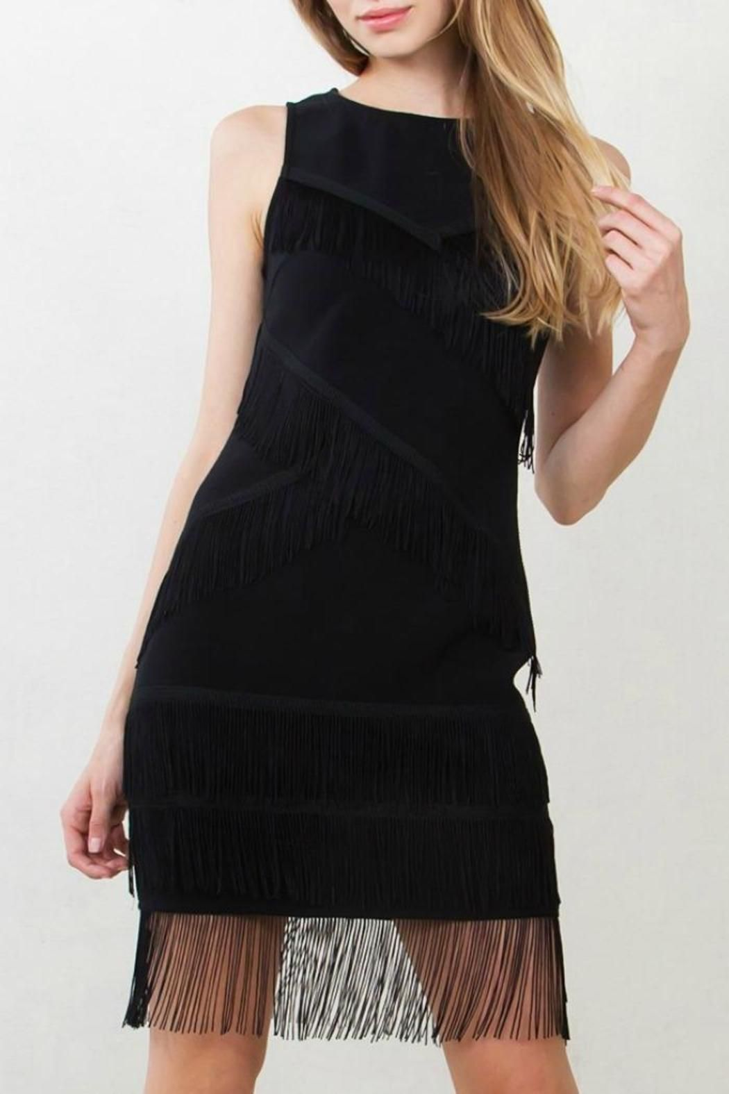 e8b0e18a0f Little black dress with fringe detail. Hidden back zipper and clasp  closure. Pair with a fur coat and heels for a fun party look!