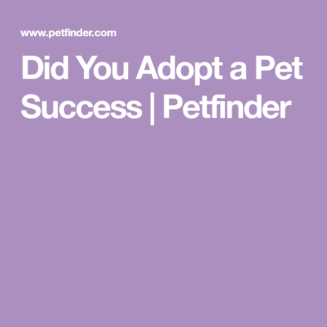 Did You Adopt A Pet Apply Form Adoption Pets How To Apply